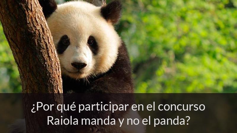 ¿Por qué participar en el concurso de Raiola manda y no el panda?